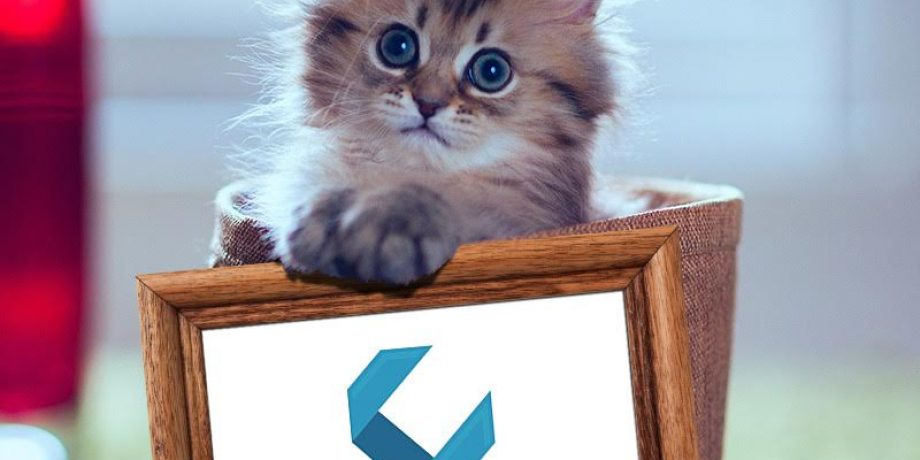 Cat Out of Glass