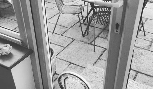 catflap black and white